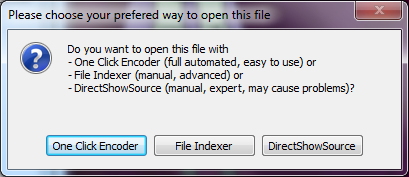 The dialogue box from MeGui when opening a file